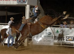 George Gillispe rides Big Tex for 91 points at Crossett, Ark., in August. (PRCA PHOTO BY ROBBY FREEMAN)
