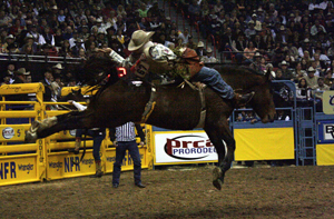 Carr Pro Rodeo's Deuces Night, a 5-year-old paint mare, helps Jason Havens to a tie for second place during the fifth go-round of the 2010 NFR. The filly matched moves with 2004 world champion Kelly Timberman to win the 10th go-round. (PHOTO BY TED HARBIN)