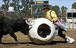 Andy Burelle works the barrel during a freestyle bullfight.