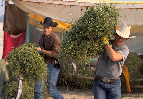 """Cowboy brothers Jet, left, and Cord McCoy carry bundles of hay through the narrow, crowded streets of Varanasi, India, during the April 3 episode of """"The Amazing Race: Unfinished Business."""" The brothers were eliminated from the CBS-TV reality series Sunday, April 24. Photo: CBS ©2011 CBS Broadcasting Inc."""