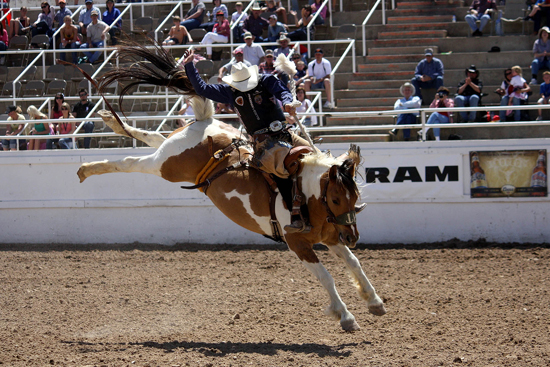 Taos Muncy, the 2007 world champion bronc rider, rides Korkow Rodeo's River Rat for 86 points to finish second at the 2011 Guymon Pioneer Days Rodeo. He is one of several cowboys with ties to the Oklahoma Panhandle who made good money at Guymon this year.