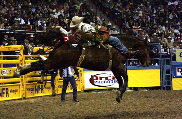 Bareback rider Jason Havens of Prineville, Ore., rides Carr Pro Rodeo's Deuces Night for 86 points, good enough for a tie for second place during the fifth go-round of the 2010 Wrangler National Finals Rodeo. Kelly Timberman of Mills, Wyo., rode the 6-year-old gelding for 88.5 points to win the 10th round of the NFR. Deuces Night had her coming-out party last June by leading Chris Harris of Itasca, Texas, to the West of the Pecos Rodeo title.  (TED HARBIN PHOTO)