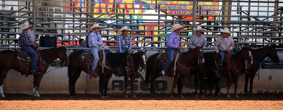 Tie-down ropers await their turn Wednesday afternoon during slack competition at the Lea County Fair and Rodeo in Lovington, N.M.