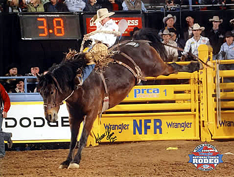This year marks the third time that Carr Pro Rodeo saddle bronc Coffee Bean has been selected to buck at the Wrangler National Finals Rodeo.