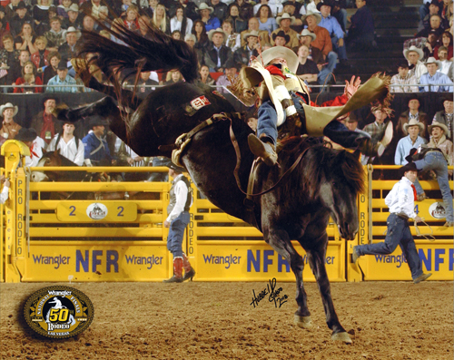 Texas cowboy Chris Harris rides Black Coffee during the 2008 Wrangler National Finals Rodeo. This year marks the third time in the horse's career the mare has been selected to the NFR.