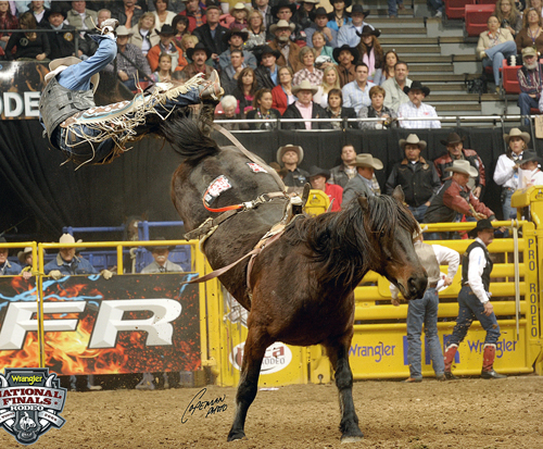 Ryan Gray is launched off the back of Carr Pro Rodeo's Real Deal during the 2009 Wrangler National Finals Rodeo.