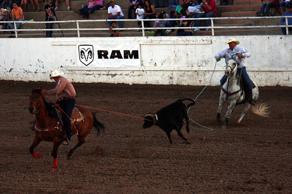 Jake Barnes, left, and Jhett Johnson rope their third-round steer on Friday, May 4. They were two of five ProRodeo world champions who won their respective disciplines at the 2012 Guymon (Okla.) Pioneer Days Rodeo. (TED HARBIN PHOTO)