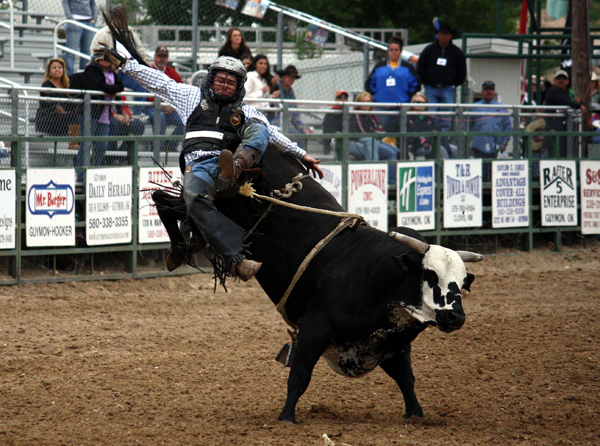 Trey Benton III is bucked off Carr Pro Rodeo's Private Eye during the final performance of the 2012 Guymon (Okla.) Pioneer Days Rodeo on Sunday. (LYNETTE HARBIN PHOTO)