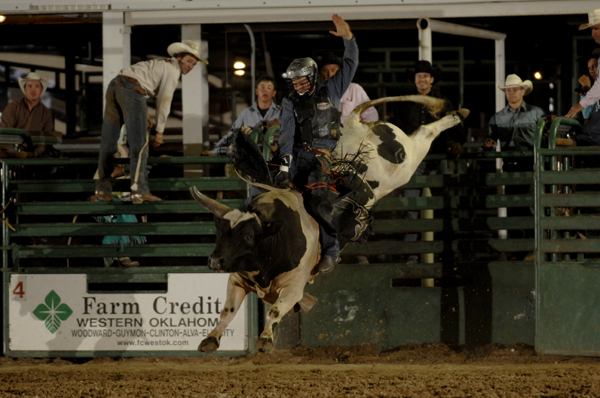Nile Lebaron tries to ride Carr Pro Rodeo's Illegal Smile at the Guymon (Okla.) Pioneer Days Rodeo the first weekend in May. Illegal Smile is one of Carr's newer bulls and is part of a pen that includes some outstanding animal athletes. (ROBBY FREEMAN PHOTO)