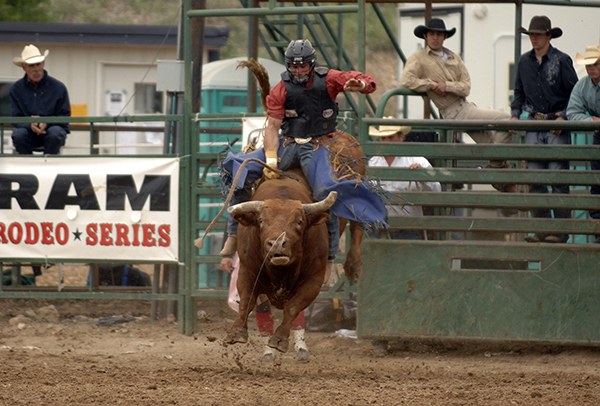 NFR qualifier Ardie Meier of Timberlake, S.D., rides Carr Pro Rodeo's The Mexican during the final performance in Guymon, Okla., this past May. Both athletes are scheduled to be part of the inaugural Lea County Xtreme Bulls event, set for 7:30 p.m. Tuesday, Aug. 7, at Jake McClure Arena in Lovington, N.M. (ROBBY FREEMAN PHOTO)