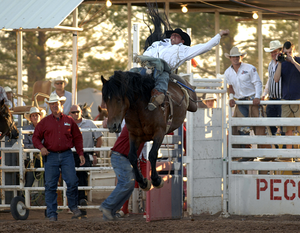 Steven Dent rides Carr Pro Rodeo's MGM Deuces Night for 91 points on Saturday night to win the West of the Pecos (Texas) Rodeo. It was the highest marked PRCA ride on the 7-year-old mare's career. (ROBBY FREEMAN PHOTO)