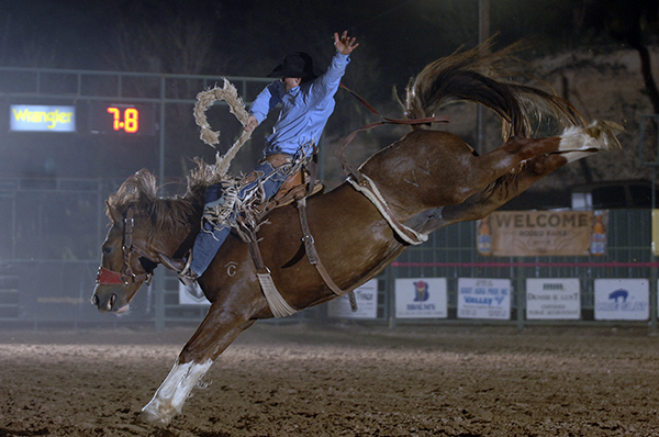 Carr Pro Rodeo's Centerfold led Jeremy Meloncon to the saddle bronc riding title at the Silverton (Texas) Buck Wild Days Rodeo. The 11-year-old sorrel mare also led Ryan Bestol to a fifth-place finish in Silverton. In this image, Cody Martin rides Centerfold in Guymon, Okla., this past May. (ROBBY FREEMAN PHOTO)