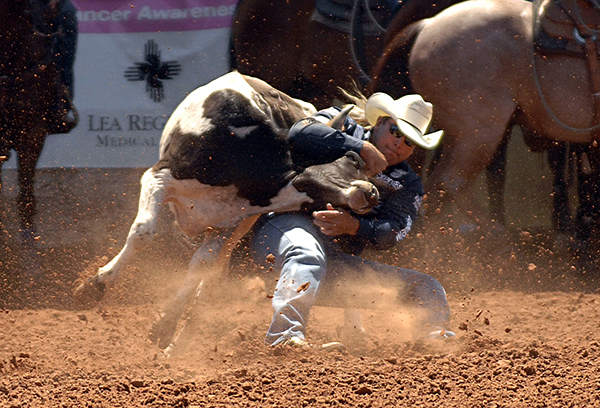 Dean Gorsuch, a two-time world champion steer wrestler from Gering, Neb., grapples his animal during a 3.5-second run Friday afternoon at the Lea County Fair and Rodeo in Lovington, N.M. Though he was saddled with a 7.9-second run in the second round, he is still No. 1 in the opening go-round with one day of competition remaining. (ROBBY FREEMAN PHOTO)
