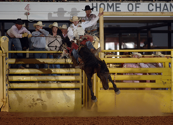 Kaycee Feild rides Carr Pro Rodeo's Real Deal for 89 points on Thursday night to take the lead at the Lea County Fair and Rodeo. (ROBBY FREEMAN PHOTO)