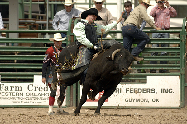 Carr Pro Rodeo's Motown bucks off Sunshine Schwartz in Guymon, Okla., in May, but he'll be tested by Wrangler National Finals Rodeo qualifier Howdy Cloud during Tuesday's Xtreme Bulls Tour stop at the Lea County Fair and Rodeo in Lovington, N.M. (ROBBY FREEMAN PHOTO)