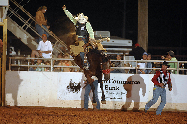Travis Sheets of Hyannis, Neb., rides Carr Pro Rodeo's True Lies for 85 points on Wednesday night to lead the saddle bronc riding standings at the Lea County Fair and Rodeo. (ROBBY FREEMAN PHOTO)