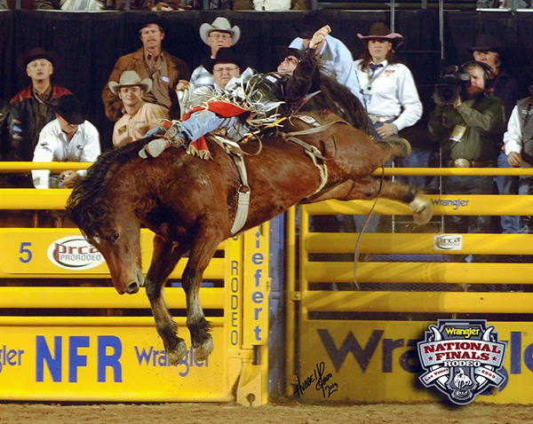 D.V. Fennell rides Carr Pro Rodeo's Dirty Jacket during the 2009 Wrangler National Finals Rodeo. Dirty Jacket is one of the many great bucking horses that was born on Jim and Maggie Zinser's ranch near Claire, Mich. The Zinsers established a breeding program that continues to impact ProRodeo. (PRCA ProRodeo Photo by Dan Hubbell)