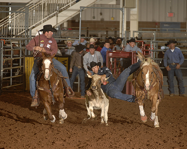 Two-time world champion Dean Gorsuch of Gering, Neb., leaps off his horse in order to down his steer in 3.8 seconds to win the first round of steer wrestling on Thursday night during the opening performance of the 2012 Chisholm Trail Ram Prairie Circuit Finals Rodeo. (ROBBY FREEMAN PHOTO)