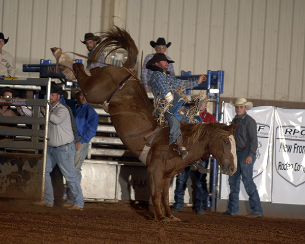 Caine Riddle rides Beutler and Son Rodeo's Rodeo Drive for 83 points to share the second go-round victory with Blaine Kaufman and the Chisholm Trail Ram Prairie Circuit Finals Rodeo in Duncan, Okla. (ROBBY FREEMAN PHOTO)