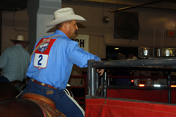 Two-time world champion Rocky Patterson looks over the steers on Friday night before the first five rounds of the Clem McSpadden National Finals Steer Roping at the Lazy E Arena.