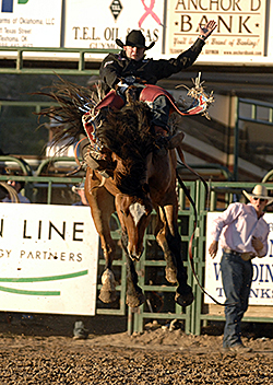 Two-time world champion Kaycee Feild rides one of Pete Carr's bareback horses during a rodeo last season. Carr owns Carr Pro Rodeo and Pete Carr's Classic Pro Rodeo, and his animals will be featured during the Bridgeport Stage Days PRCA Rodeo, set for 7:30 p.m. May 10-11 at the Bridgeport Riding Club Arena. (ROBBY FREEMAN PHOTO)