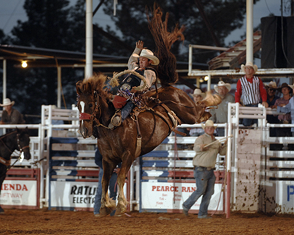 Two-time world champion Cody Wright rides Carr Pro Rodeo's Deuces Wild for 88 points during Friday's performance of the West of the Pecos Rodeo. He leads the rodeo with one performance remaining. (ROBBY FREEMAN PHOTO)