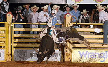 Kanin Asay rides Wild Card Rodeo's Plaid Shirt during the short go-round of the 2012 Lea County Xtreme Bulls event in Lovington, N.M. Asay won the average title and earned nearly $8,000. Because of injury, the bull rider will be unable to defend his title, but that just opens the door for a number of other great cowboys to claim the top prize. (ROBBY FREEMAN PHOTO)