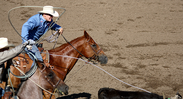Two-time reigning world champion tie-down roper Tuf Cooper is showcased in Trey Johnson's loop compete in team roping Friday morning.