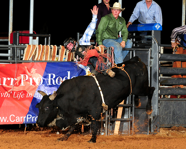 Cooper Davis rides Carr Pro Rodeo's One Bad Cat for 90 points to win the bull riding title at the Waller County Fair and Rodeo in Hempstead, Texas. He was one of eight Hempstead champions that have qualified for the Wrangler National Finals Rodeo. (JAMES PHIFER PHOTO)