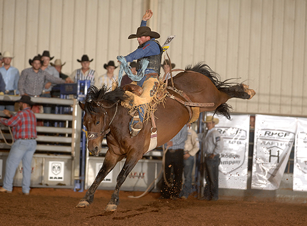 Travis Sheets rides Beutler and Son Rodeo's Dreamer for 79 points on Thursday night to win the opening go-round of saddle bronc riding at the Chisholm Trail Ram Prairie Circuit Finals Rodeo in Duncan, Okla. (ROBBY FREEMAN PHOTO)
