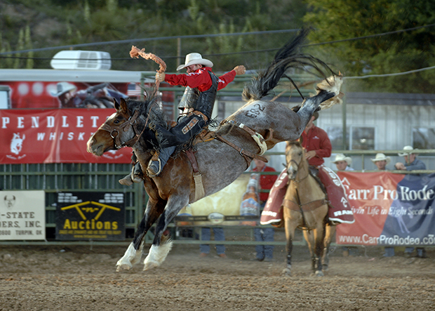 Cort Scheer had a tremendous 2013 campaign, winning the Calgary (Alberta) Stampede and the Professional Rough Stock Series bronc riding title. Now he's ready for his third trip to the Wrangler National Finals Rodeo (ROBBY FREEMAN PHOTO)