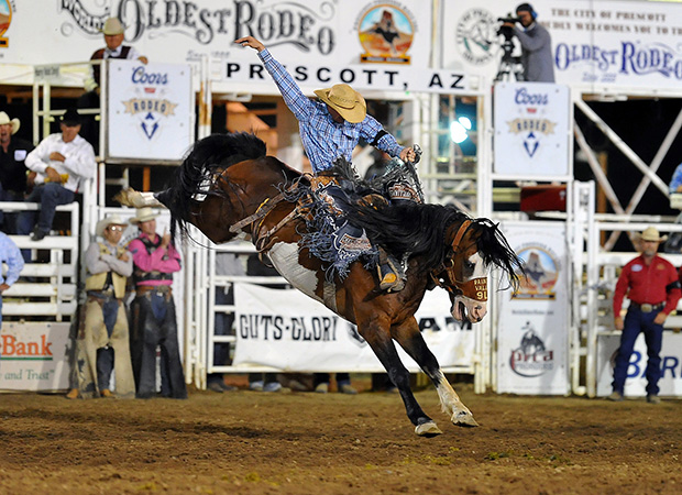 Tyler Corrington of Hastings, Minn., rides Harry Vold Rodeo's Painted Valley for 86 points to win a share of the title at the World's Oldest Rodeo in Prescott, Ariz. Corrington is the fourth-ranked bronc rider heading into the Wrangler National Finals Rodeo, set for Dec. 5-14 in Las Vegas. (DALE MILLER PHOTO)