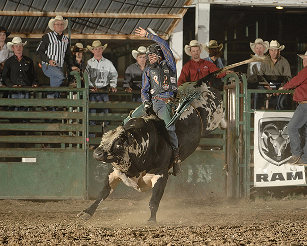 Sage Kimzey rides Pete Carr's Classic Pro Rodeo's Line Man for 92 points to take the lead at the Guymon Pioneer Days Rodeo on Saturday night. (ROBBY FREEMAN PHOTO)