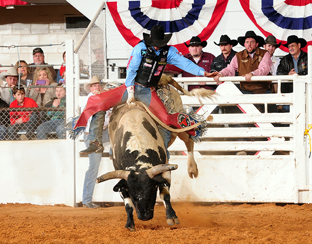 Four-time world champion J.W. Harris rides Pete Carr's Classic Pro Rodeo's Medicine Show earlier this year to win the Fort Worth (Texas) Super Shootout. Harris is one of the numerous top bull riders in the PRCA who will be in Lovington, N.M., for the Lea County Xtreme Bulls, set for Tuesday, Aug. 5., at the Lea County Fair and Rodeo. (JAMES PHIFER PHOTO)