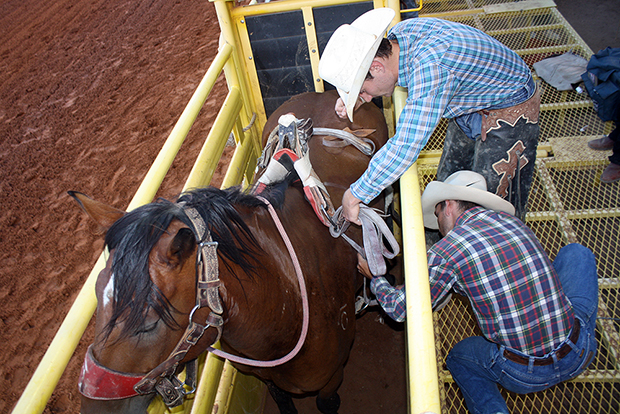 Bill Tutor, upper right, gets help from bronc rider Joe Lufkin as Tutor sets his rigging on Pete Carr Pro Rodeo's great horse Dirty Jacket. In their fourth meeting, they matched moves for 88 points and own the lead at the Lea County Fair and Rodeo with one performance remaining Saturday night.