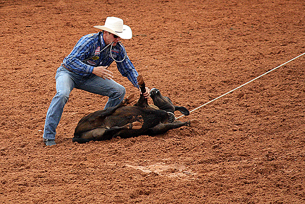 "Two-time world champion tie-down roper Tuf Cooper closes out a 7.8-second run Wednesday to lead the first round at the Lea County Fair and Rodeo. During the second performance, the family was on hand during a dedication to those who have supported rodeo in the county, including Cooper's grandfather, Dale ""Tuffy"" Cooper. Tuf Cooper's two-run time of 16.2 seconds leads the Lovington average."