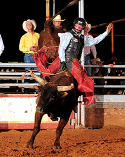 Cooper Davis rides Pete Carr Pro Rodeo's One Bad Cat for 90 points to win the 2013 Waller County Fair and Rodeo's bull riding title. Davis is one of many NFR qualifiers who have done well at the Hempstead rodeo. (PHOTO BY JAMES PHIFER)