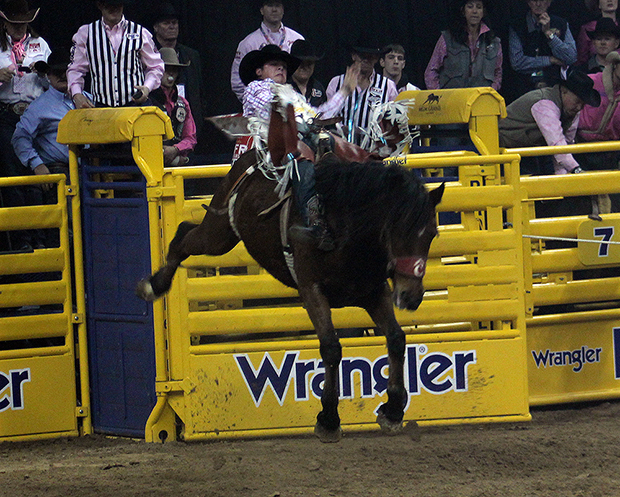 Richmond Champion rides Pete Carr Pro Rodeo's Dirty Jacket on Monday for 88.5 points to win the fifth round of the Wrangler National Finals Rodeo. (TED HARBIN PHOTO)