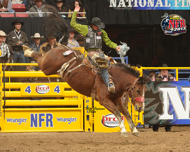 "Two-time world champion Taos Muncy rides Pete Carr's Gold Coast during the 2013 Wrangler National Finals Rodeo. The New Mexico cowboy is a vital part of the Tate Branch Auto Group ""Riding for the Brand"" team and carries his strong New Mexico ties with him around the rodeo circuit. (PRCA PRORODEO PHOTO BY MIKE COPEMAN)"