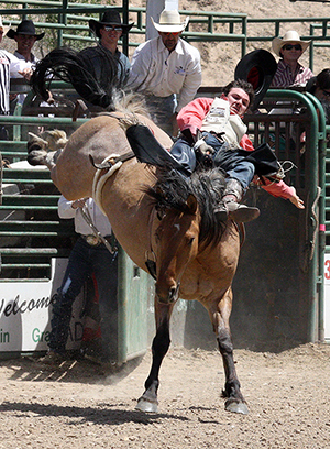 Painted River – which guided Mason  Clements into the money in Guymon, Okla., in 2014 – became the first Pete Carr Pro Rodeo ranch-raised horse to be chosen to the Wrangler National Finals Rodeo. The young mare helped Jake Brown to the Round 6 victory at the 2015 NFR.