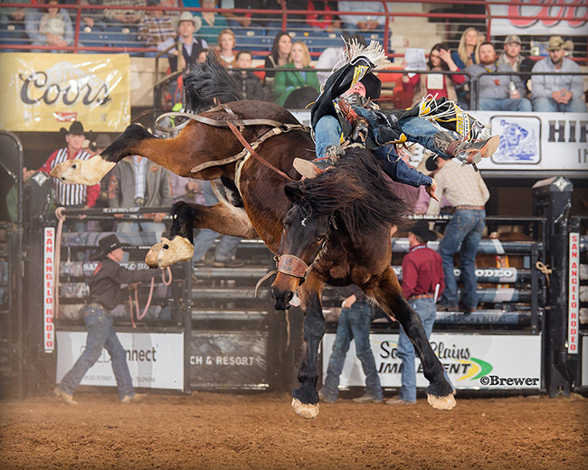 Jake Vold of Ponoka, Alberta, rides Pickett Pro Rodeo's Faded Memories for 88 points Friday night at the San Angelo Stock Show and Rodeo to take the bareback riding lead. (PHOTO BY TODD BREWER)