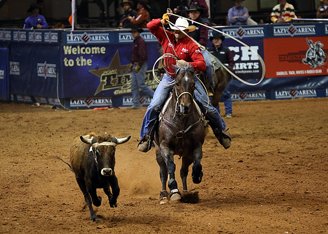 Trell Etbauer chases his steer during his final run of the fourth round. (PHOTO BY STEPHANIE COOMBES)