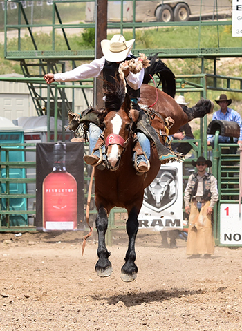 Saddle bronc rider Roper Kiesner matches moves with Pete Carr Pro Rodeo's Manhatten Moon for 83 points on Sunday (JAMES PHIFER PHOTO)