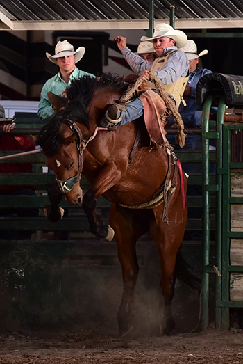 Clay Elliott of Nanton, Alberta, rides Korkow Rodeo's Rekker for 80.5 points and sits in a tie for fourth place with his traveling partner, Audy Reed of Spearman, Texas. (JAMES PHIFER PHOTO)