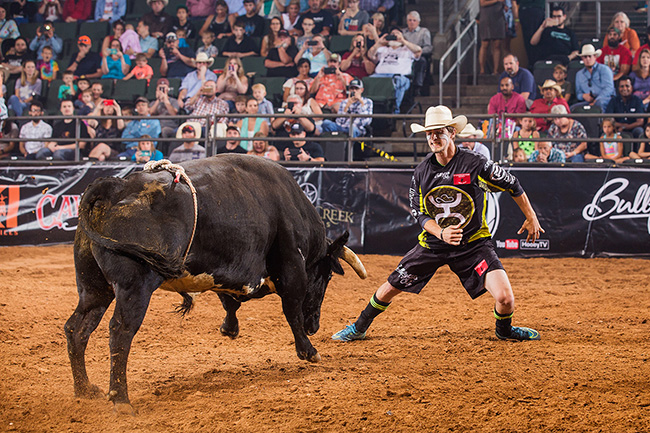 Schell Apple will celebrate his 21st birthday next week, and he has hopes of having the Bullfighters Only tour title from Bremerton, Wash., in his hands when the day arrives. (TODD BREWER PHOTO)