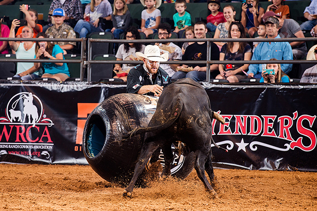 Chuck Swisher competes earlier this year at the Bullfighters Only's Cavender's Cup in Cedar Park, Texas. Swisher suffered a knee injury during his bullfight in Sikeston, Mo. He will miss at least four months. (TODD BREWER PHOTO)