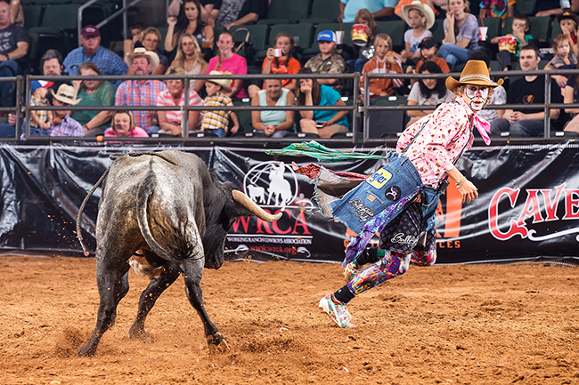 Justin Josey is excited to be part of the Bullfighters Only tour event in conjunction with the Pro Auto NYA Bull Riding event this coming weekend. He will be one of six bullfighters shooting for the title. (TODD BREWER PHOTO)