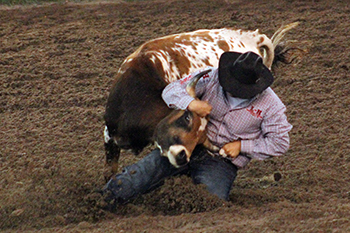 Justen Nokes of Juniata, Neb., wrestles his steer to the ground in 4.7 seconds Saturday to share the victory in the second go-round at the KPRA Finals.