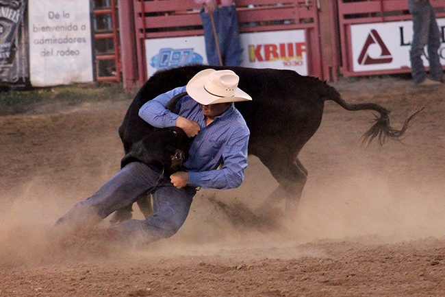 Northwestern Oklahoma State University teer wrestler Cody Devers, shown competing earlier this year, won the Oklahoma State University rodeo's bulldogging title this past weekend in Stillwater, Okla.