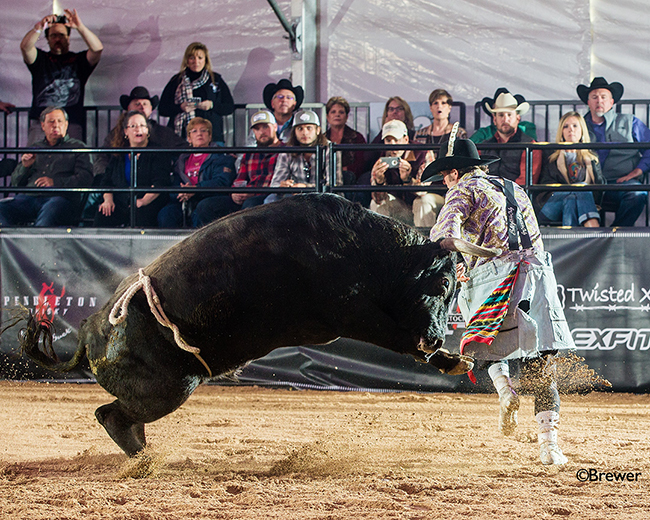 Beau Scheuth slides past 12X and Costa Fighting Bulls' Bad Intentions, scoring 88.5 points to advance to Saturday's final round of the Bullfighters Only Las Vegas Championship. (TODD BREWER PHOTO)